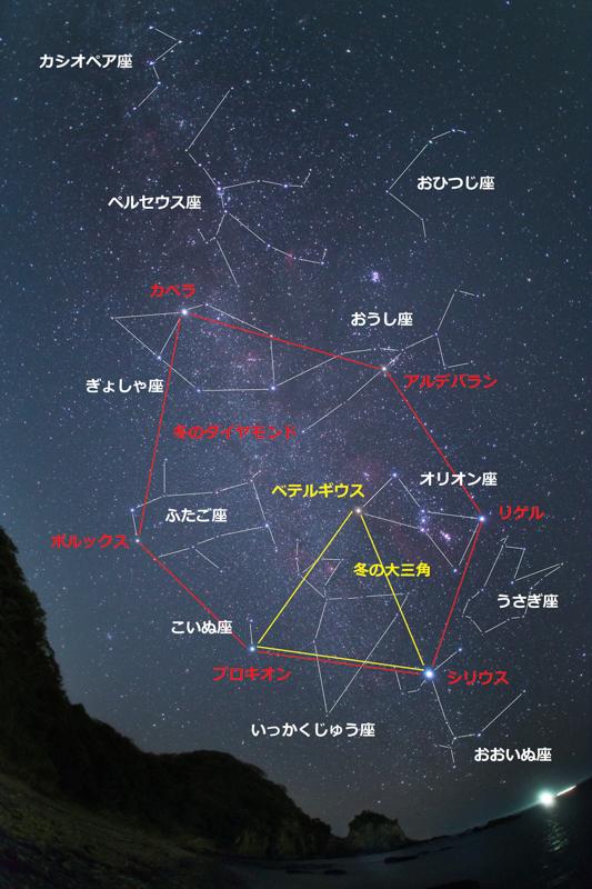 冬の満天星[図解]B.jpg