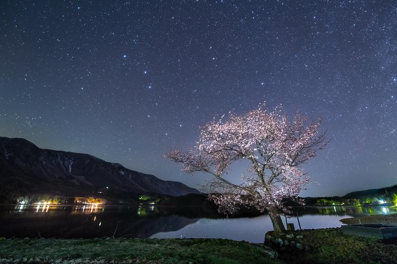 桜星景~青木湖の桜2B.jpg