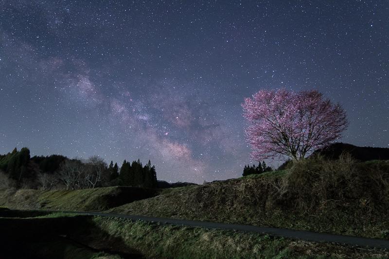 野平の一本桜と天の川2B.jpg
